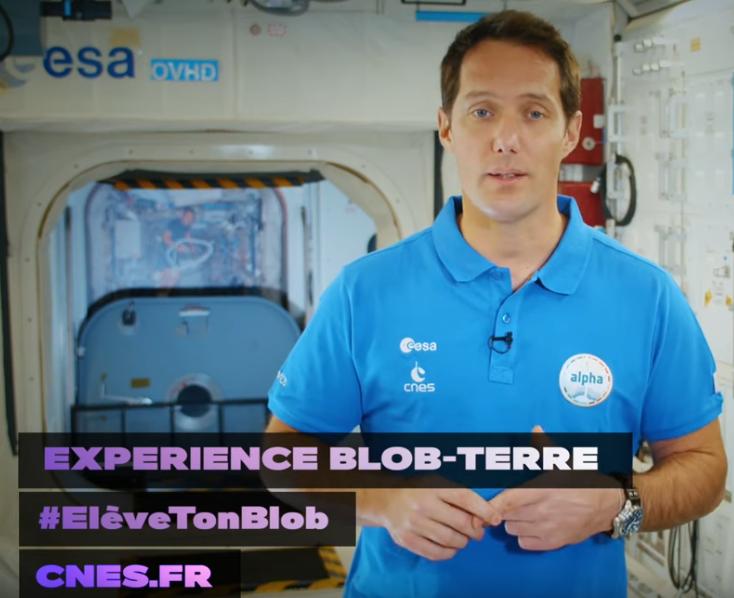 #EleveTonBlob : le projet éducatif de la mission Alpha